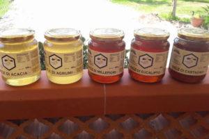 Produzione miele Calabria